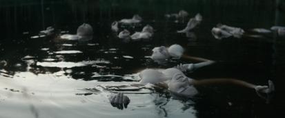 Film Exposure_Bridgend