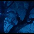 Swordsman 2 – Mère Nature7