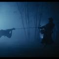 Swordsman 2 – Nature8